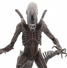 7inch Action Figure Series 14 Alien Resurrection - Alien Xenomorph Warrior
