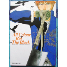 BLEACH Illustration Collection - All Colour But The Black