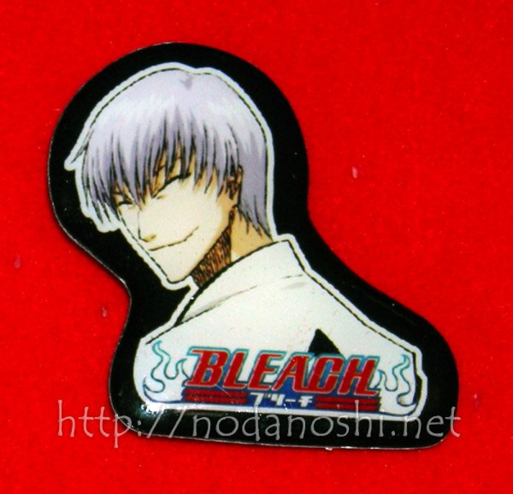 Bleach (form pin) - 09